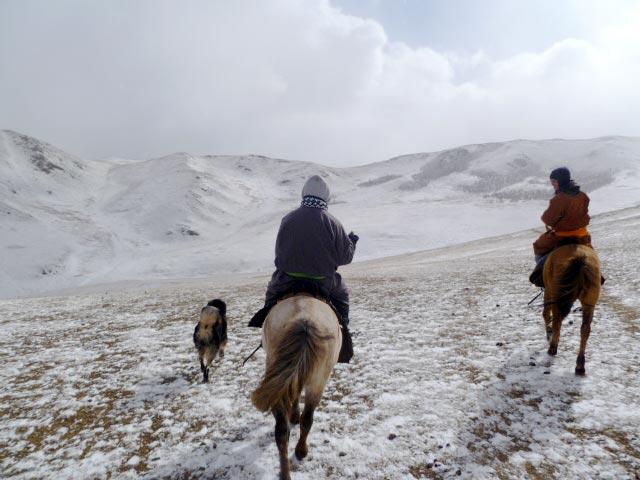 horse-riding-mongolia